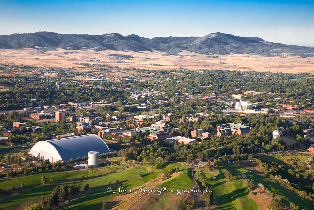Quot University Of Idaho Moscow Quot