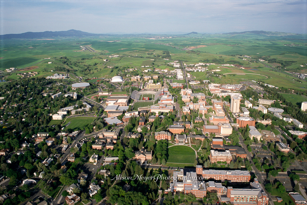 Quot Washington State University In The Palouse Hills Quot