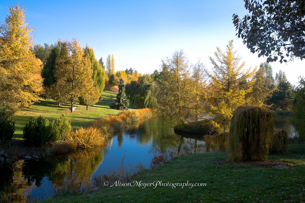 Quot Autumn Arboretum Moscow Idaho Quot