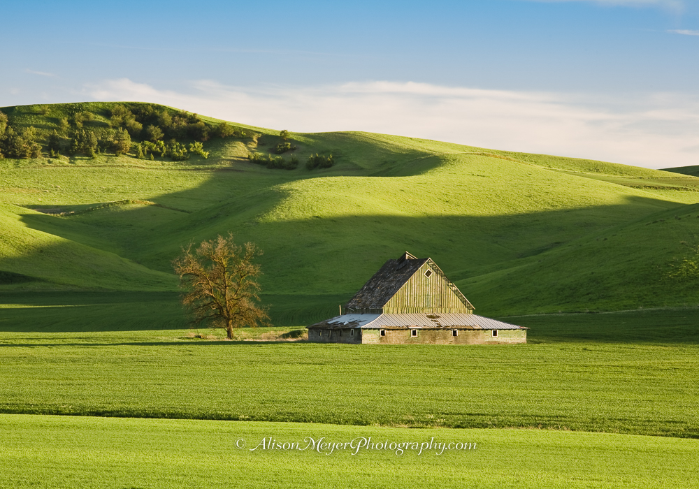Quot Color Co Ordinated In The Palouse Hills Quot