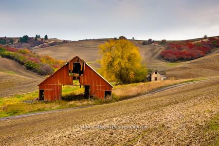 """Autumn Barn, Whitman County, Washington"""
