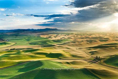 """Moscow Mountain and Palouse Fields"""