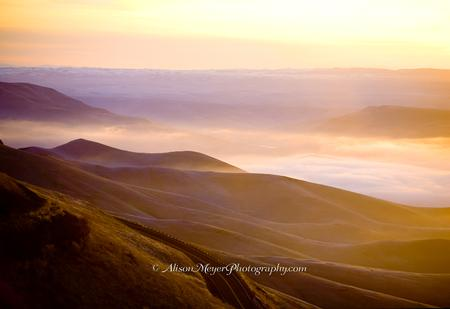 """Misty Morning, Lewis-Clark Grade, Idaho-Washington Border"""