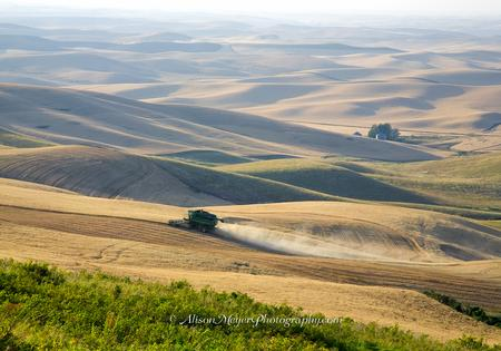 """Harvesting the Palouse Hills"""