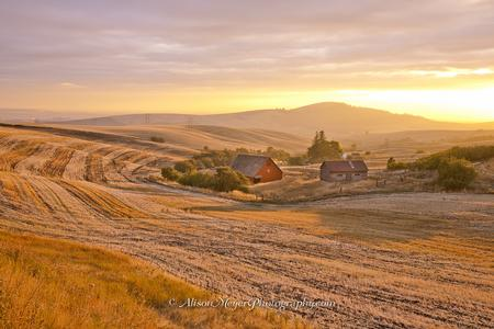 """Harvest Sunset Over the Palouse Hills"""