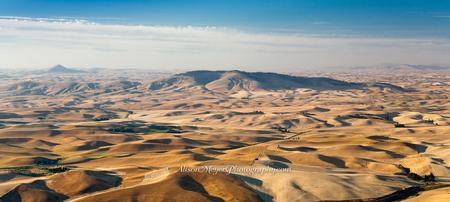"""Toasty Palouse Hills"""