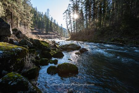 """South Fork of the Clearwater River, Idaho"