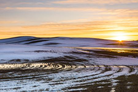 """End of Winter on the Eastern Palouse"""